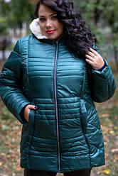 Куртки для полных женщин