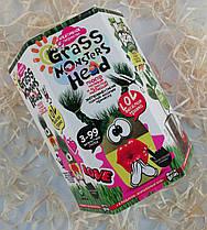 Набор для креативного творчества Grass Monsters Head GMH-01-05 Danko-Toys Украина
