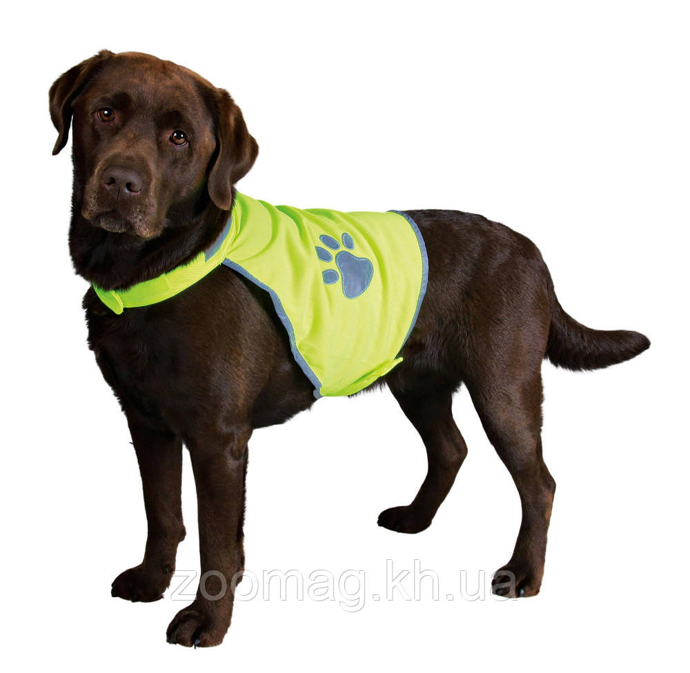 """Жилет светоотражающий """"Safer Life"""" для собак, Trixie™"""