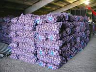 Сетка овощная 40*60см (до 20кг) с завязкой фиолетовая