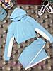 Костюм штаны и укороченная кофта с лампасами и капюшоном, фото 6