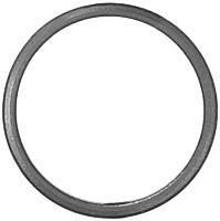 11.031 Кільце діаметр 100х12х6 невальц.