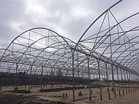 Промислові плівкові теплиці для комерційного вирощування, фото 1