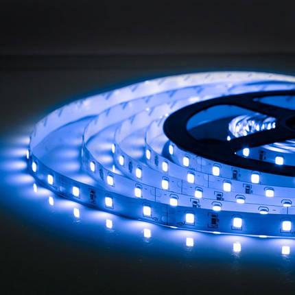 Светодиодная лента B-LED 3528-60 IP20, герметичная, синяя, фото 2