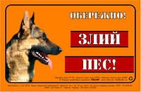 Предупреждающая надпись  ОБЕРЕЖНО, ЗЛИЙ ПЕС, немецкая овчарка, полноцвет