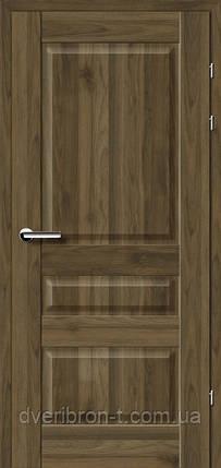 Двери Брама Модель 19.50, фото 2