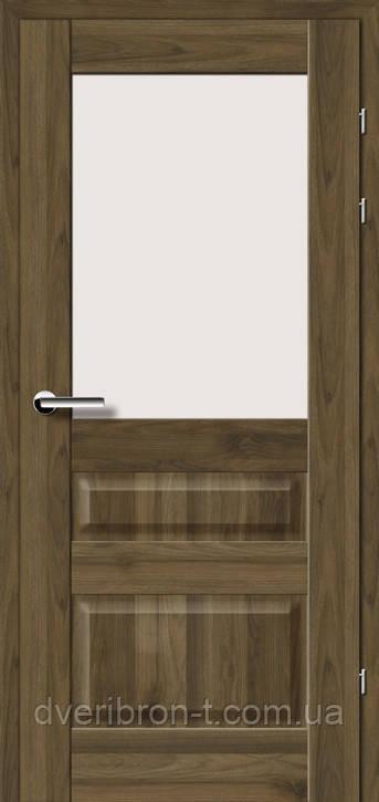 Двері Брама Модель 19.51