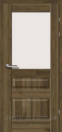 Двері Брама Модель 19.51, фото 2