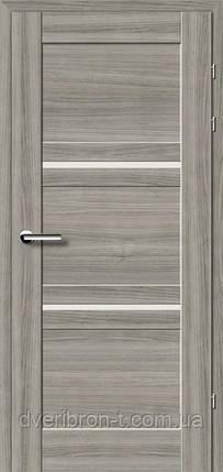Двери Брама Модель 19.81, фото 2