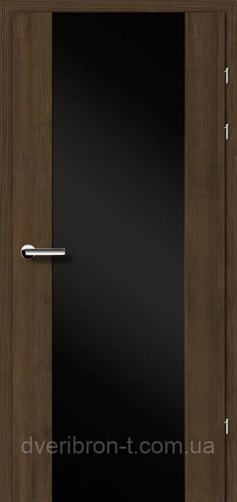 Двері Брама Модель 17.3 триплекс