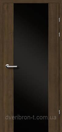 Двері Брама Модель 17.3 триплекс, фото 2