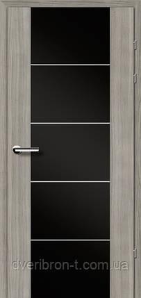 Двери Брама Модель 17.3 М, фото 2