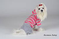 Pet Fashion Костюм Лидер XS2