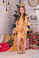 Карнавальный костюм Золотая Рыбка, фото 1