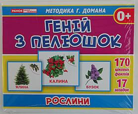 "Развивающие карточки: Геній з пелюшок ""Рослини"" 1014-2/13107042У Ранок Украина"
