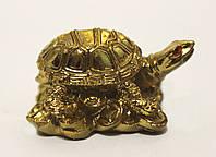 Черепаха на монетах золотая.
