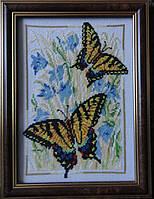Картина «Бабочки Махаоны» вышитая крестом ручной работы 21х15 см
