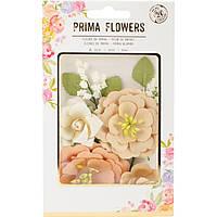 Квіти - Pumpkin - Amber Moon - Prima Marketing - 6 шт.