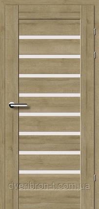 Двери Брама Модель 19.31 Е, фото 2