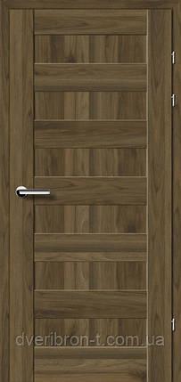 Двери Брама Модель 19.40 Е, фото 2