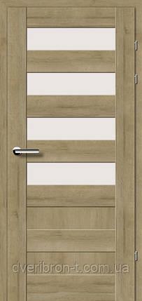 Двері Брама Модель 19.44 Е, фото 2