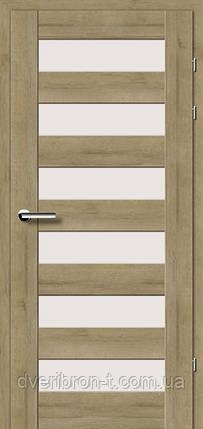 Двери Брама Модель 19.46 Е, фото 2