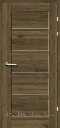 Двери Брама Модель 19.84 Е, фото 2