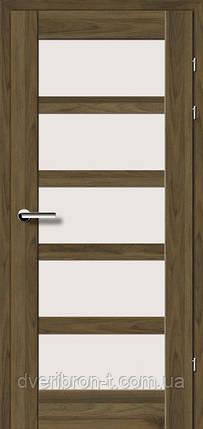 Двери Брама Модель 19.85 Е, фото 2