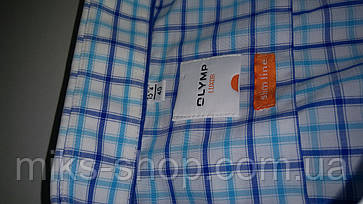 Мужская рубашка, фото 3