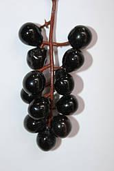 Смородина гроздь