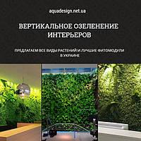 Вертикальное озеленение интерьеров, фото 1