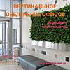 Вертикальное озеленение офисов