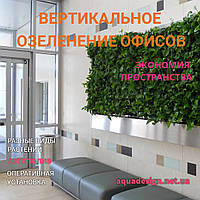 Вертикальное озеленение офисов, фото 1