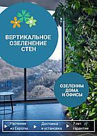 Вертикальное озеленение стен, фото 1