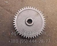 Шестерня 25.22.103А привода гидронасоса,трактора Т-25,Т-25А,В Т З-2032, фото 1