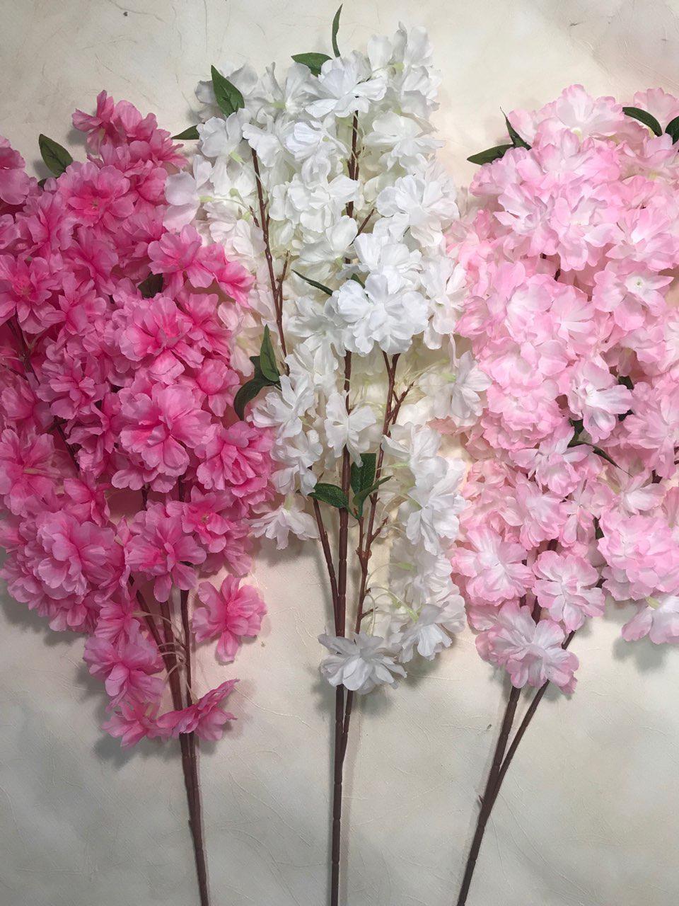 Декоративные цветки сакуры