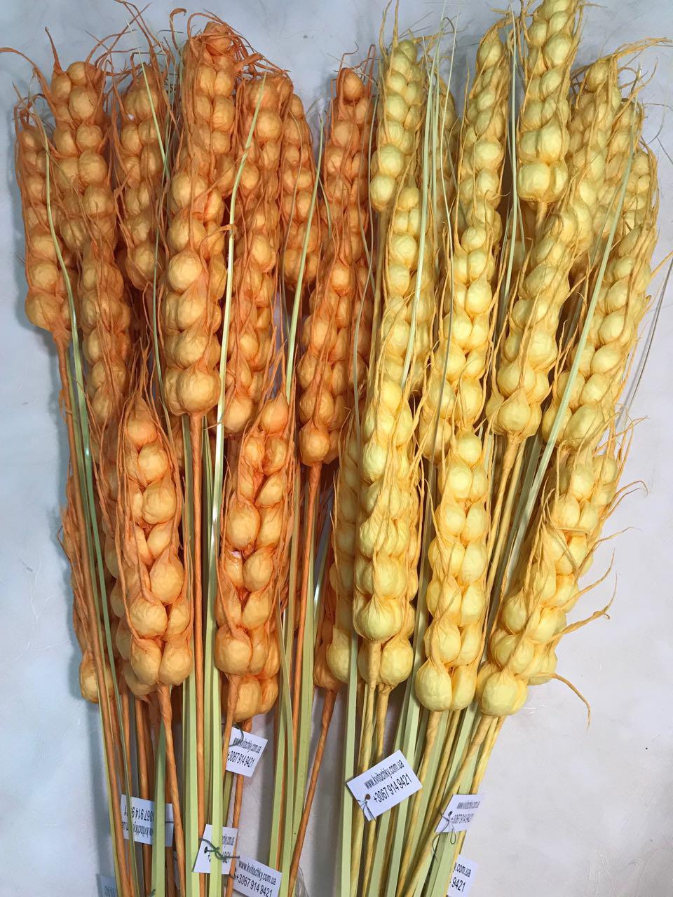 Искусственная пшеница.Декоративные пшеничные колосья.