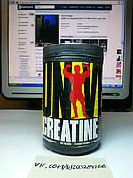 Universal Nutrition Creatine Powder 500г, фото 1