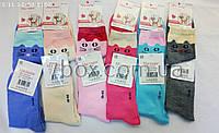 Детские носки для девочек кошка, тм.Малыш, 30-35рр, хлопок 12шт С224