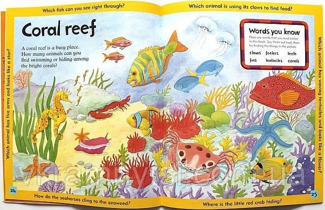 Under the Sea | «Під водою». Серія: Дитячі книги англійською, Крамниця дитячих книжок, vkramnytsi.com.ua