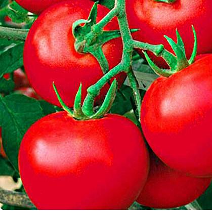 Семена томата Вано F1 (1 г)