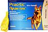 Прак-тик капли для собак больших размеров 22-50 кг (3 пипетки) (пирипрол)