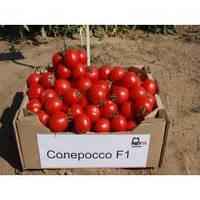 Семена томата Солероссо F1 25 000 сем. (дражированные)