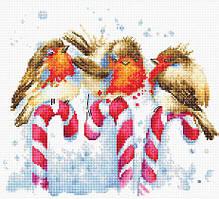 Набор для вышивания крестиком B1154 Рождественские птицы