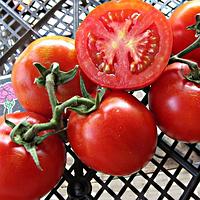 Семена томата Загадка розовая (5 г)