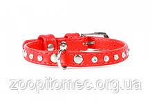 Collar ошийник GLAMOUR зі стразами 9 мм довжина 19-25 см червоний/oranj