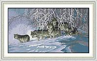 Волки DA100 Набор для вышивки крестом с печатью на ткани 14ст