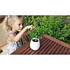 Горшок для растений с музыкой и подсветкой Smart music Flowerpot, фото 4