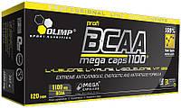 Амінокислоти BCAA Olimp Labs Mega Caps 1100
