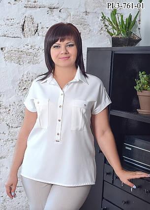 Женская блуза прямого силуэта с воротником / размер 52-62, фото 2